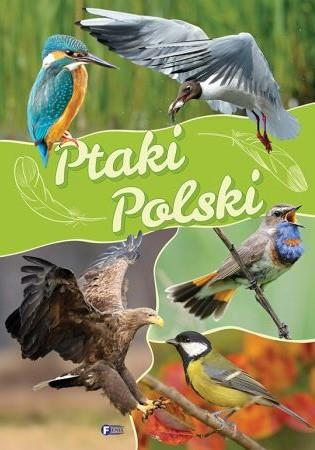 Ptaki Polski TW FENIXPtaki Polski TW FENIX