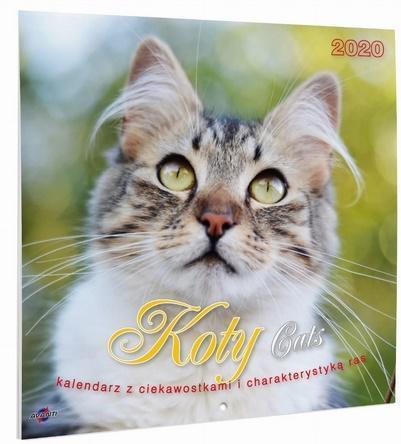 Kalendarz Albumowy Duży KOTY KAD-9 OUTLET