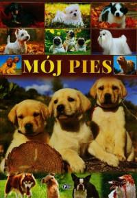 MÓJ PIES outlet