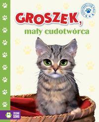 ZSM TW Groszek, mały cudotwórca NOWY