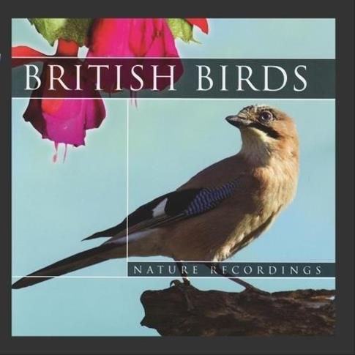 British Birds CD
