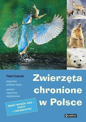 Zwierzęta chronione w Polsce OUTLET