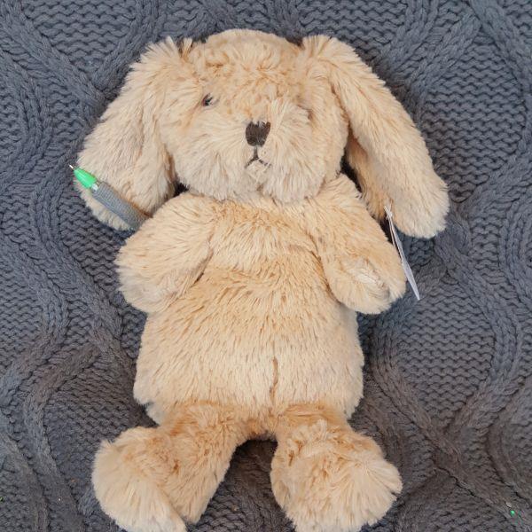 Piórnik Sinsay króliczek