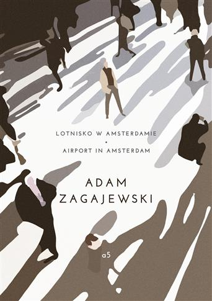Lotnisko w Amsterdamie. Airport in Amsterdam