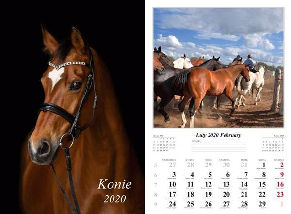 Kalendarz 2020 Konie 13 planszowy RADWAN