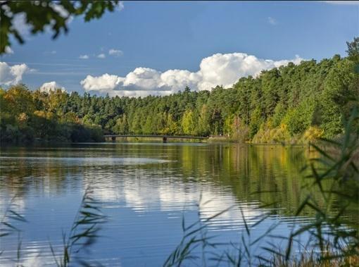 Kalendarz 2020 Trójdzielny Jezioro, jesień RADWAN