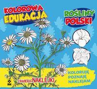 Kolorowa Edukacja Rośliny Polski outlet