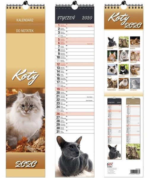 Kalendarz 2020 13 Plansz paskowy - Koty EV-CORP