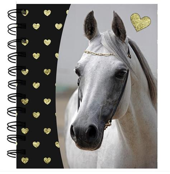 Notes spiralny Horse PP19H-3631 PASO