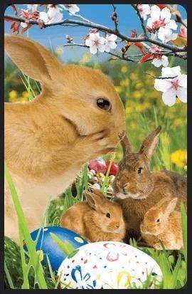 Wielkanocne króliczki minikartka 3D