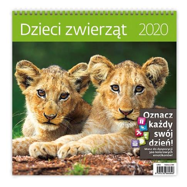 Kalendarz 2020 Dzieci zwierząt 30x30cm NARCISSUS