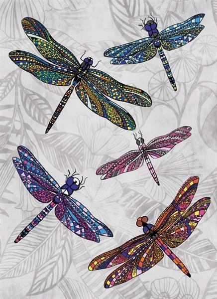 Karnet B6 z kopertą Dragonfly Dance