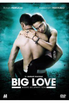 BIG LOVE MIŁOŚĆ DO UTRATY TCHU DVD