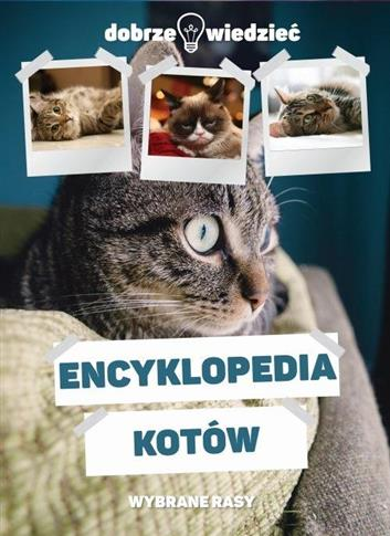 ENCYKLOPEDIA KOTÓW     OUTLET-10345