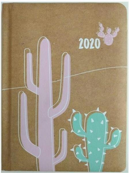 Kalendarz tygodniowy B6 2020 Kaktus ALBI