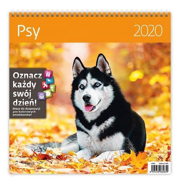 Kalendarz 2020 Psy 30x30cm NARCISSUS