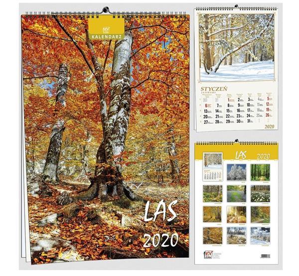 Kalendarz 2020 13 Plansz B3 - Las EV- CORP