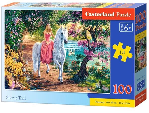 Puzzle 100 Secret Trail CASTOR