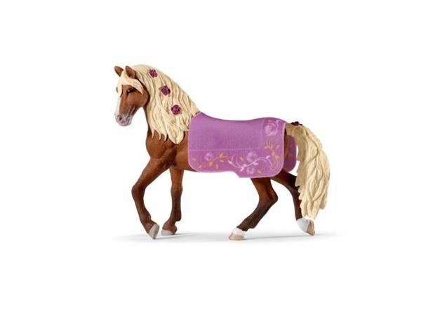 Horses Club Ogier Konia Paso Fino