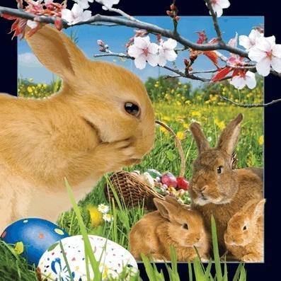 Wielkanocne króliczki pocztówka 3D