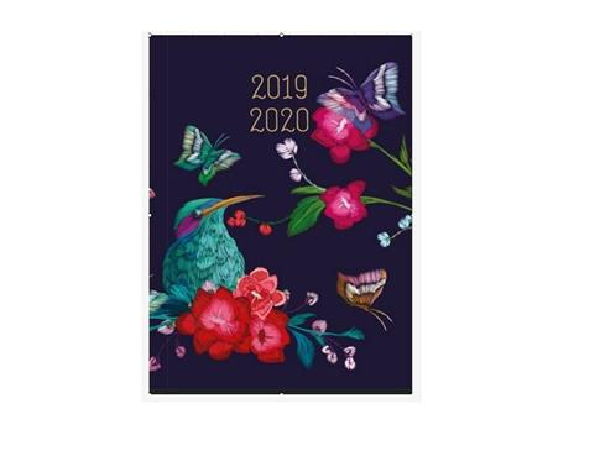 Kalendarz tygodniowy B6 2019-2020 Zimorodek ALBI
