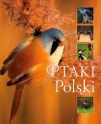 Ptaki Polski outlet