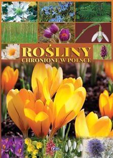 ROŚLINY CHRONIONE W POLSCE WYD. 2014 TW OUTLET