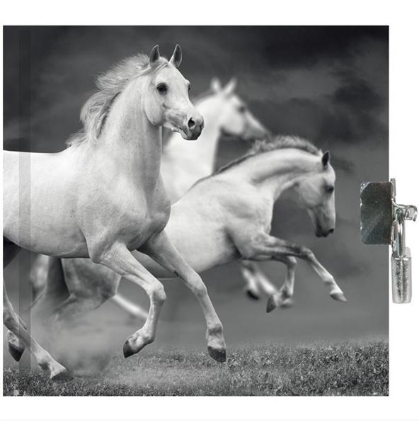 Pamiętnik z kłódką Horse PP19HS-3640 PASO