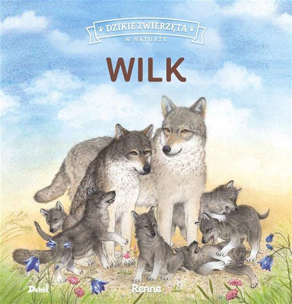 Dzikie zwierzęta w naturze. Wilk