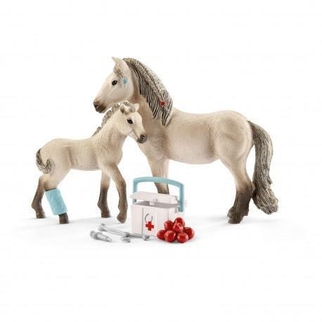 Islandzki koń i apteczka