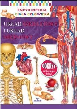 Encyklopedia ciała człowieka. Układ szkieletowy...