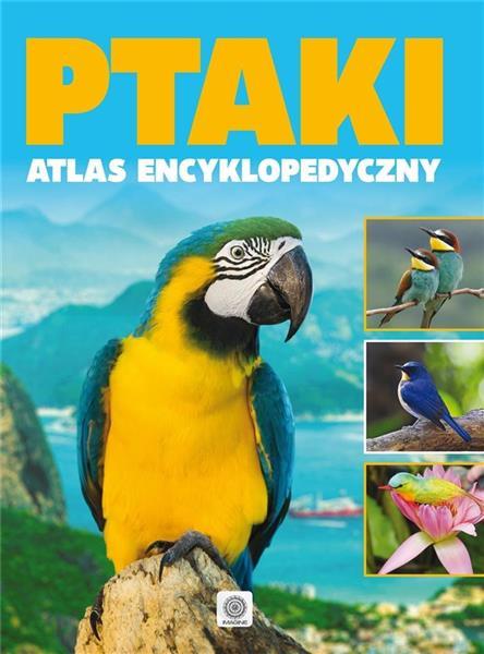 Ptaki atlas encyklopedyczny OUTLET