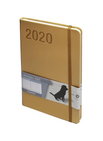 Kalendarz 2020 Minimalizm A5 Musztardowy TNS ANTRA