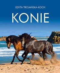 KONIE OUTLET