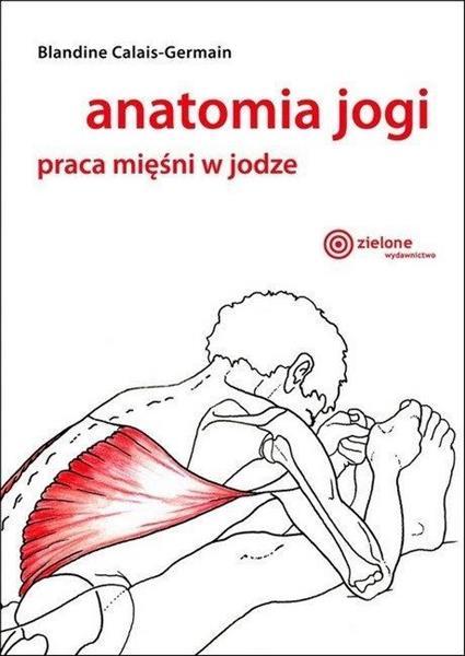 Anatomia jogi. Praca mięśni w jodze