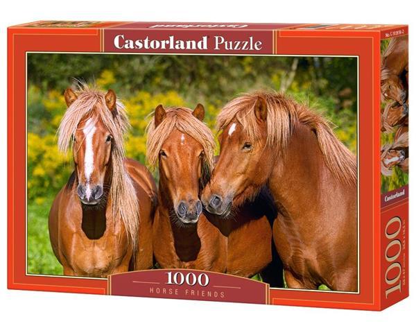 Puzzle 1000 Przyjaciele CASTOR