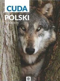ZWIERZĘTA CUDA POLSKI    outlet-10390