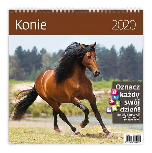 Kalendarz 2020 Konie 30x30cm NARCISSUS