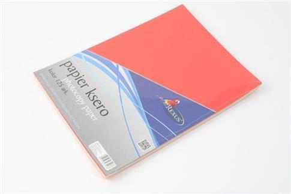 Papier ksero A4/125ark. kolor mix
