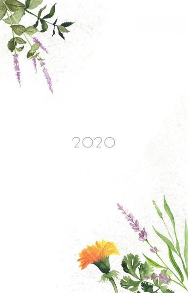 Kalendarz 2020. Zielnik ZS 5902860452218