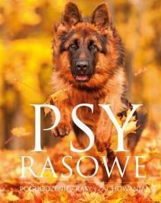 PSY RASOWE. POCHODZENIE RASY ... OUTLET