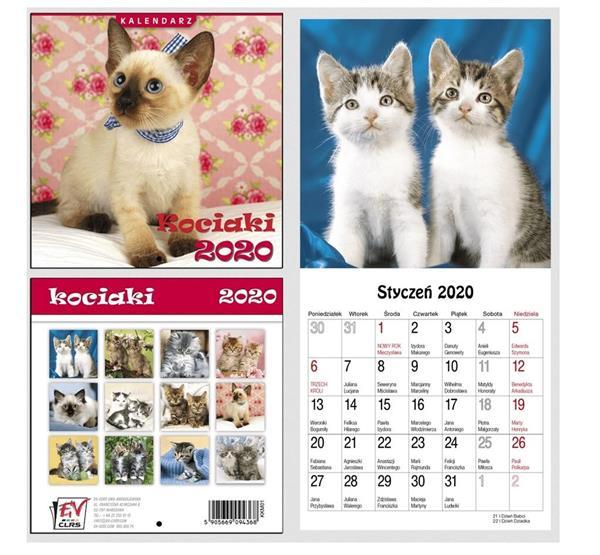 Kalendarz 2020 13 Plansz 16x16cm Kociaki EV-CORP