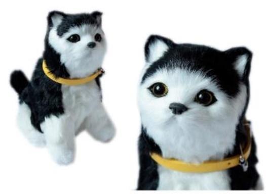 Interaktywny kotek czrno-biały