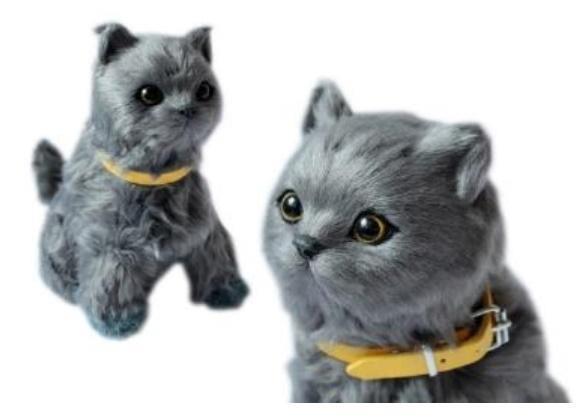 Interaktywny kotek szary