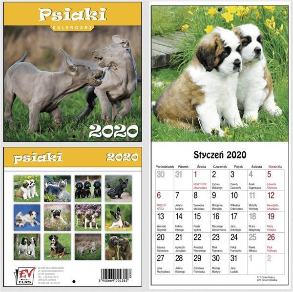 Kalendarz 2020 13 Plansz 16x16cm Psiaki EV-CORP