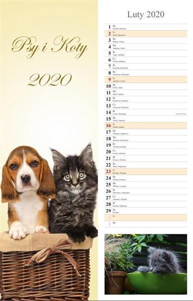 Kalendarz 2020 Psy i Koty 13 planszowy RADWAN