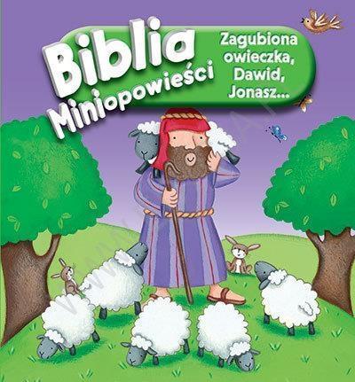 ZAGUBIONA OWIECZKA DAWID JONASZ BIBLIA..outlet