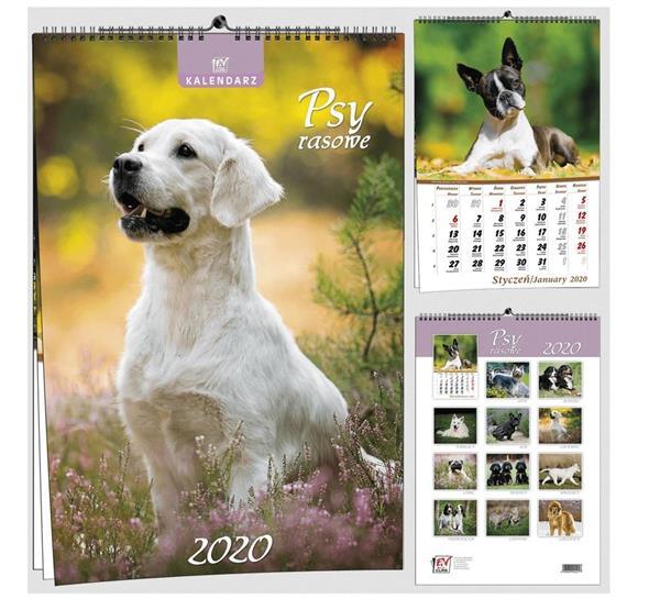 Kalendarz 2020 7 Plansz B3 - Psy EV-CORP