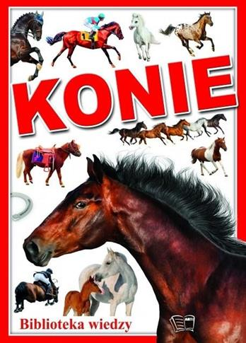 KONIE BWN OUTLET