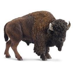 Amerykański bizon